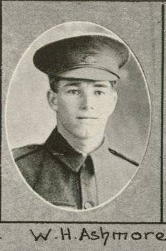 Private William Hugh Ashmore - 4364 - 25th Battalion Aust Infantry, AIF - KIA 5 August 1916