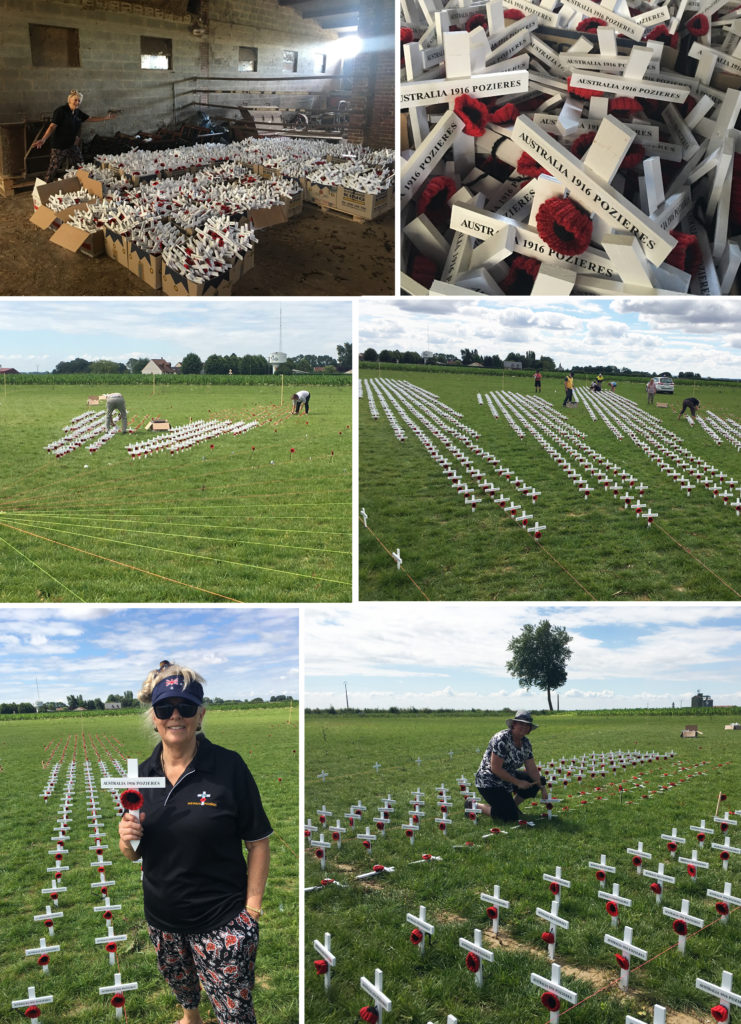 Crosses in the ground 1